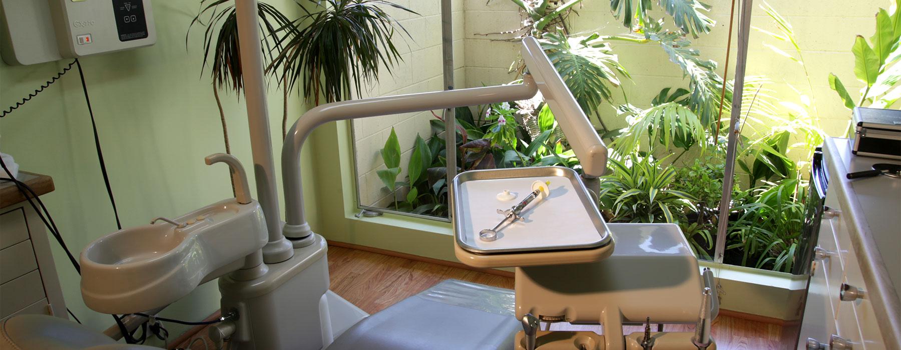 family business story dentist exam room